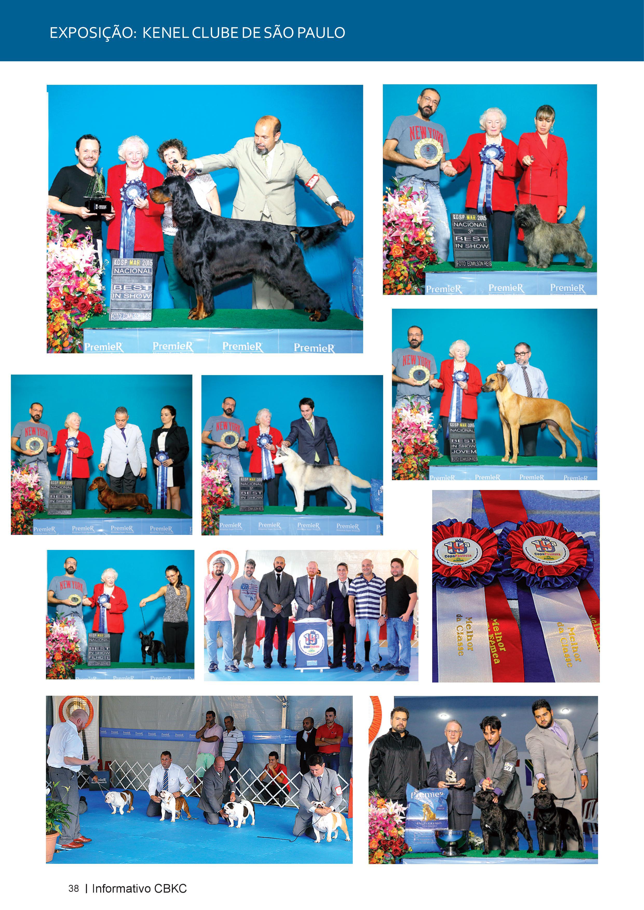 Pagina 38| Edição 50 do Informativo CBKC