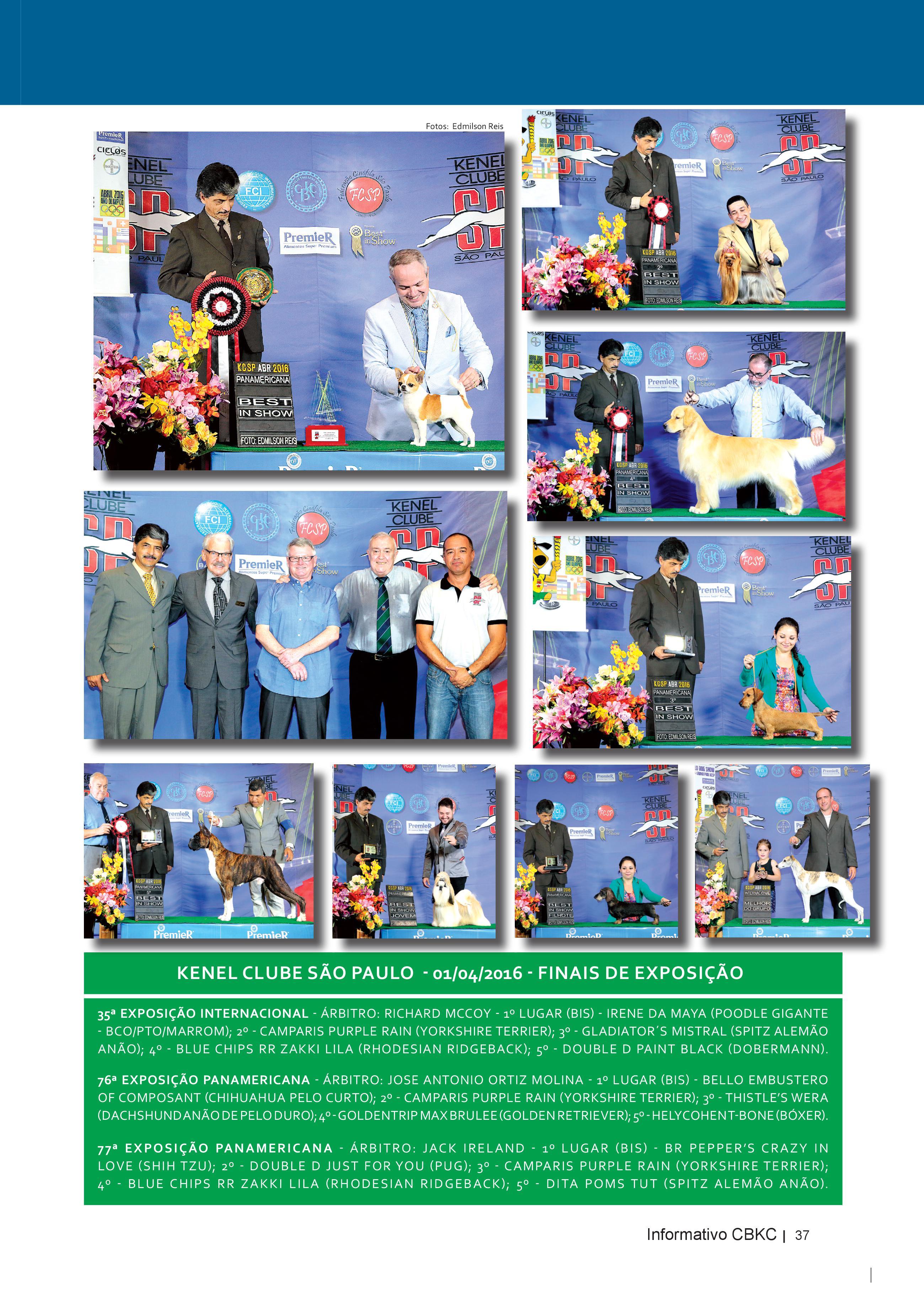 Pagina 37| Edição 52 do Informativo CBKC