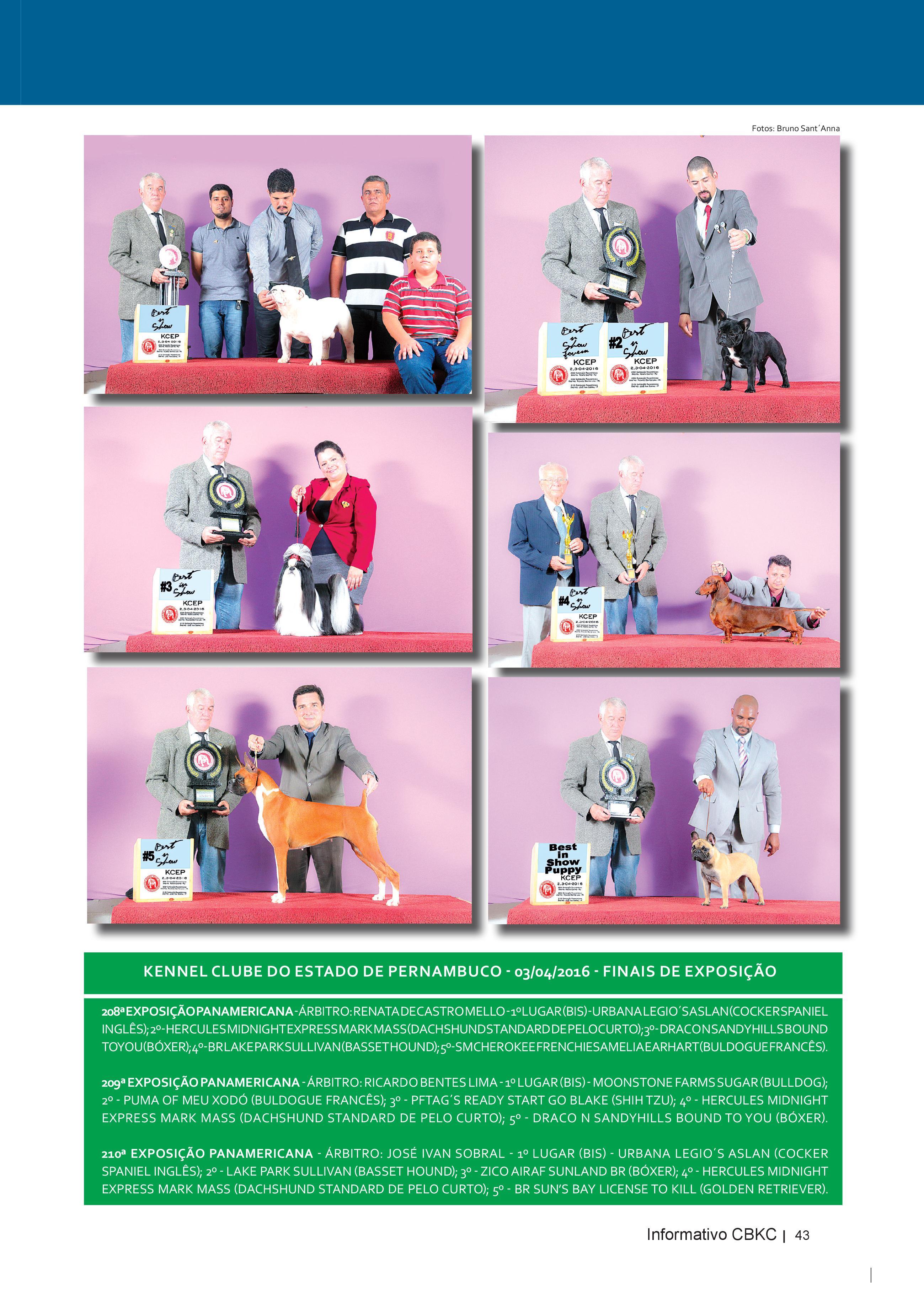 Pagina 43| Edição 52 do Informativo CBKC
