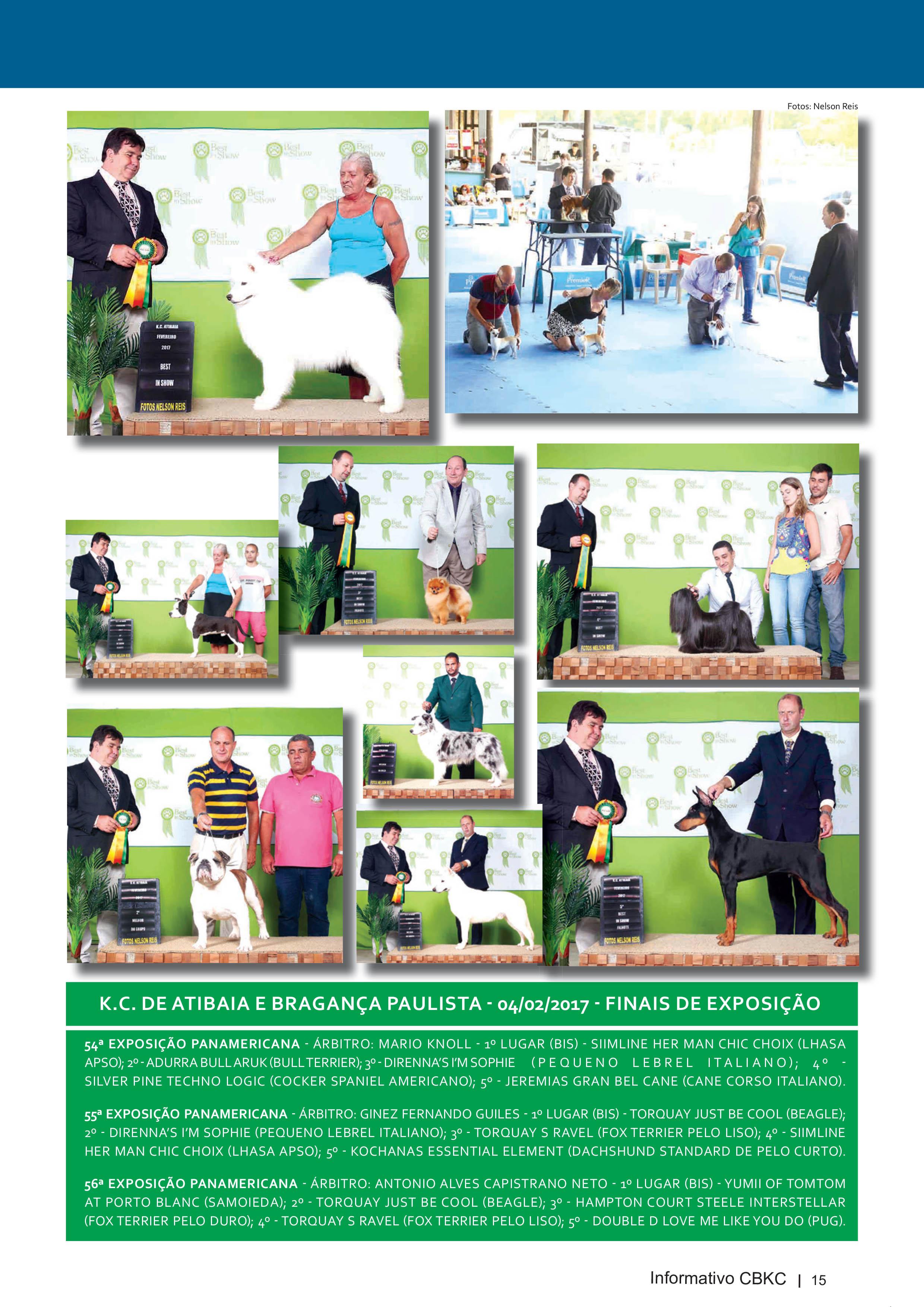 Pagina 15| Edição 54 do Informativo CBKC