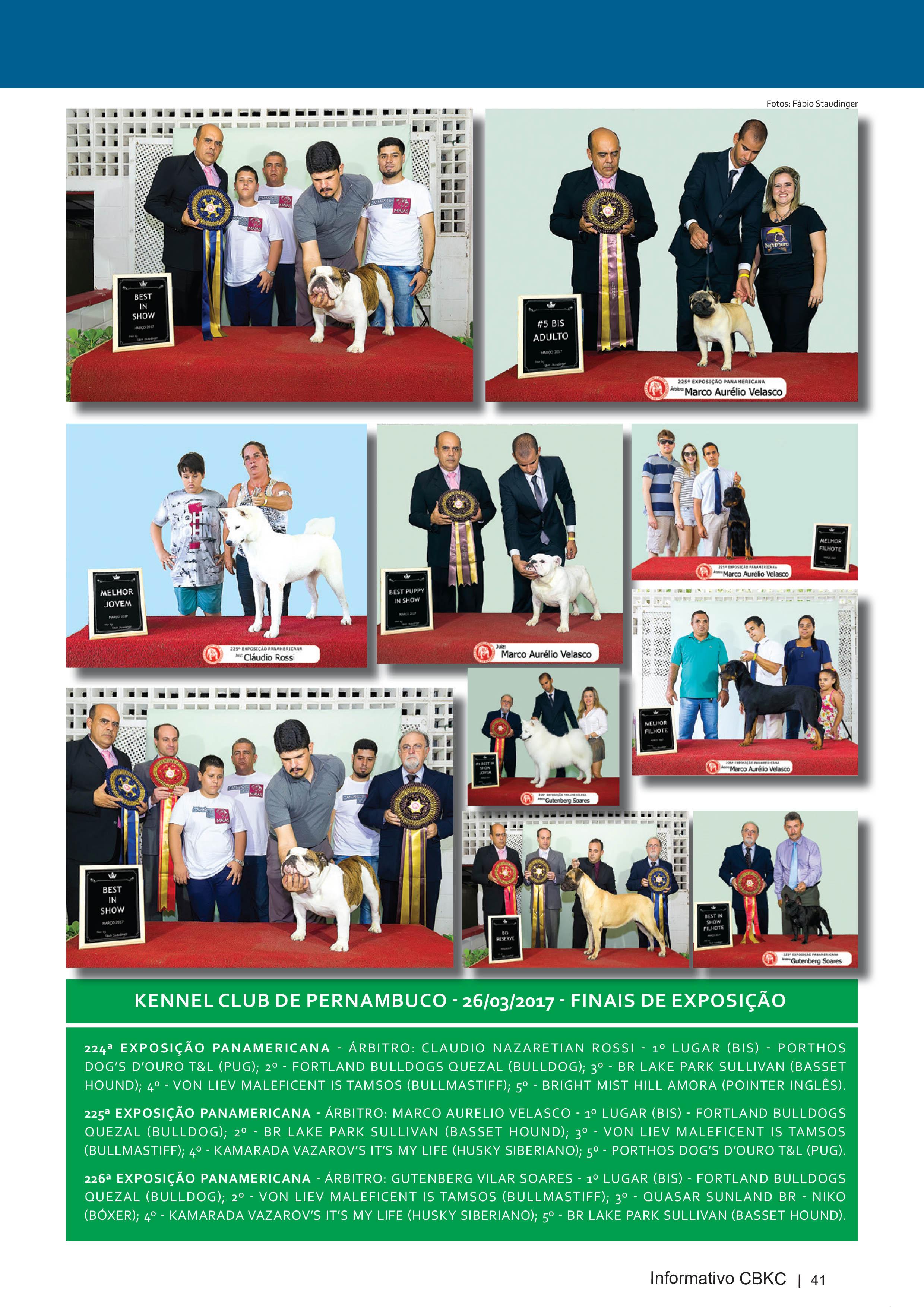 Pagina 41| Edição 54 do Informativo CBKC