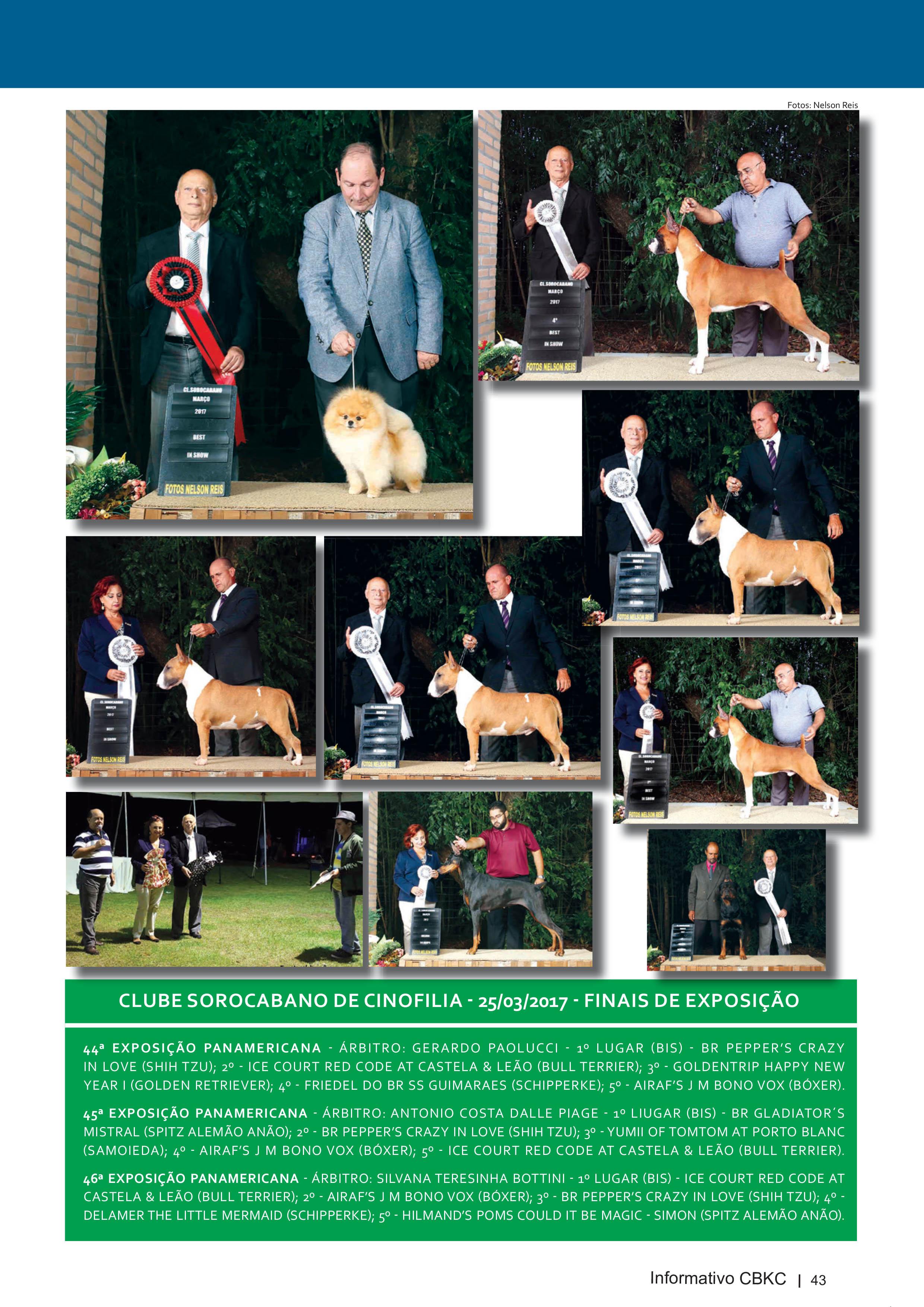 Pagina 43| Edição 54 do Informativo CBKC