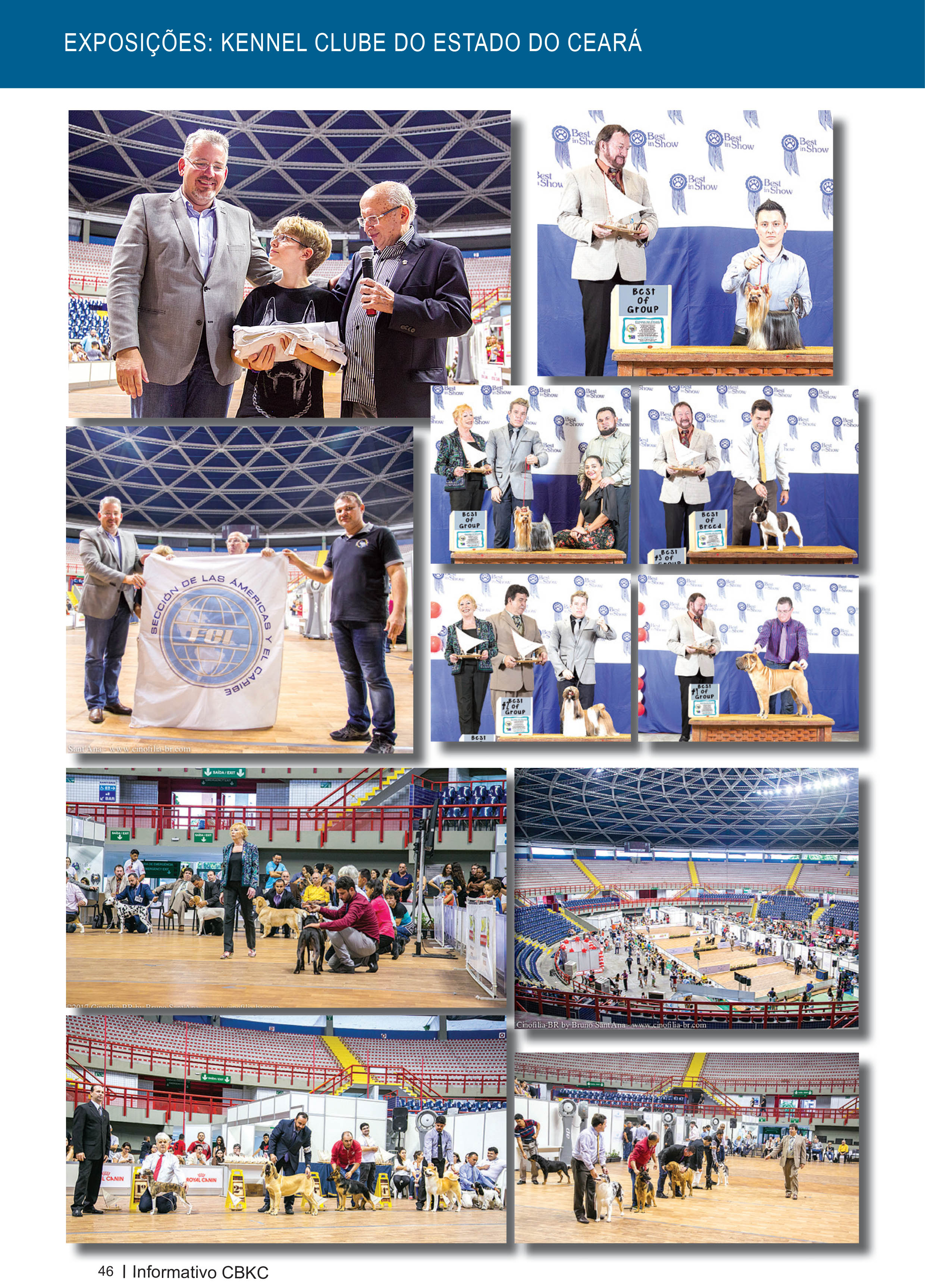 Pagina 46| Edição 54 do Informativo CBKC