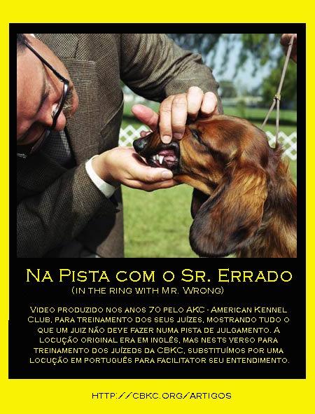 Artigo Na Pista com o Sr. Errado - 2012-04-04