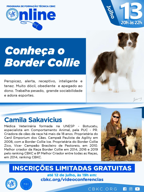 Imagem Videoconferências CBKC: Conheça o Border Collie