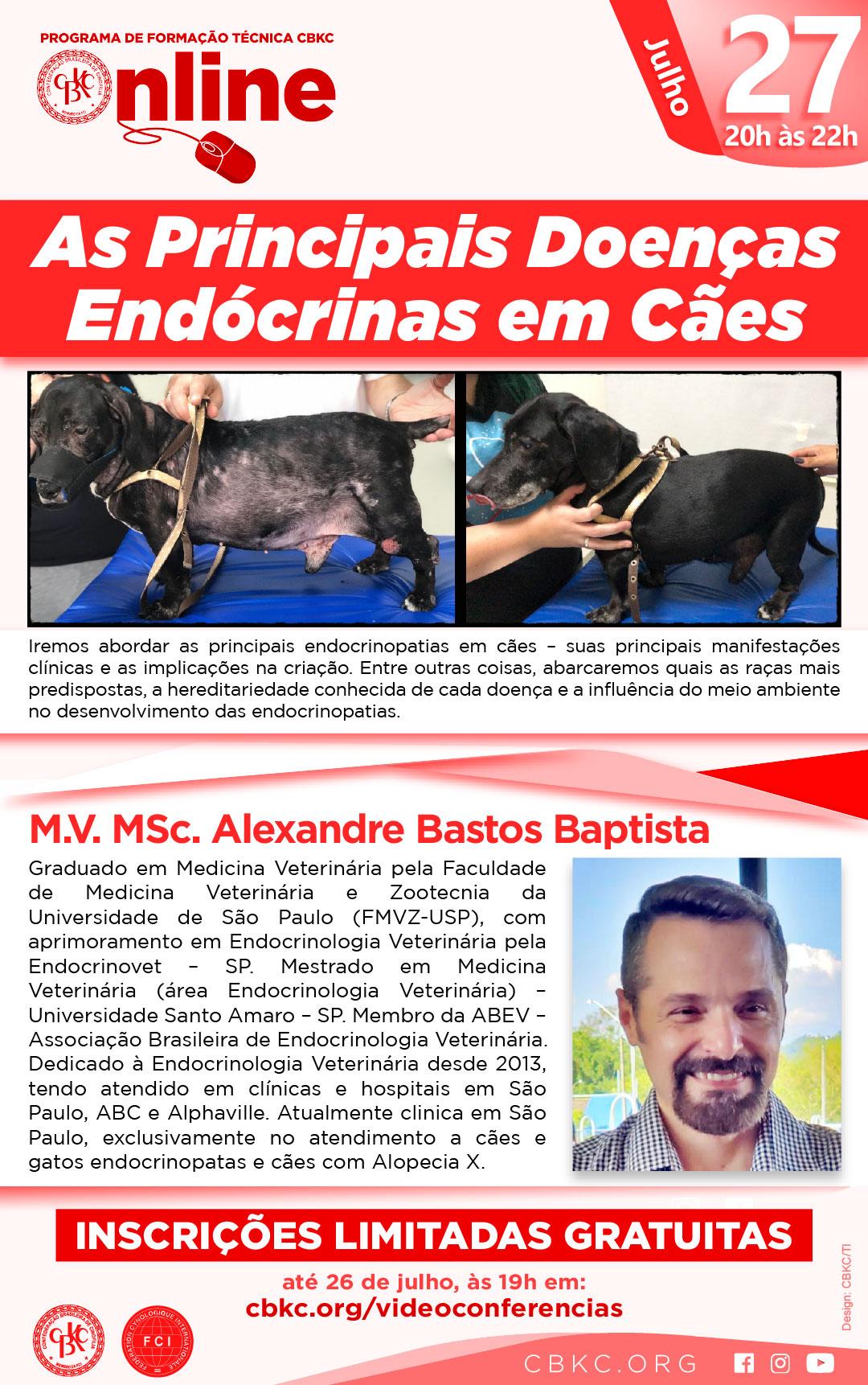 Imagem Videoconferências CBKC: As Principais Doenças Endócrinas em Cães