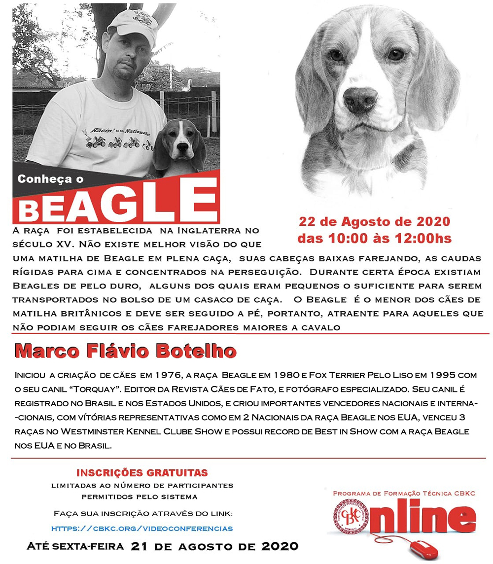 Imagem Videoconferências CBKC: Conheça o Beagle