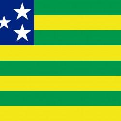 Membros do Conselho CBKC: Goiás